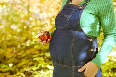 Happy pregnant woman in the autumn forest Royalty Free Stock Photos