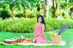 Happy pregnant woman picnic. In the park Stock Image