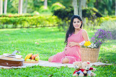 Happy pregnant woman picnic. In the park Stock Images