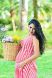 Happy pregnant woman picnic in the park. On green background Royalty Free Stock Images