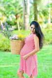 Happy pregnant woman picnic in the park. On green background Stock Photography