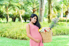 Happy pregnant woman picnic in the park. On green background Stock Images