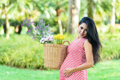 Happy pregnant woman picnic in the park. On green background Royalty Free Stock Image