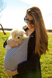 Happy pregnant woman with puppy siamese dog in park Stock Images