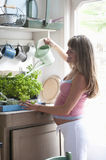 Happy Pregnant Woman Watering Plants. Side view of happy pregnant women watering plants at home Royalty Free Stock Photos