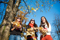 Happy pretty girls in the park Royalty Free Stock Photo