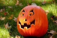 Happy pumpkin royalty free stock photo