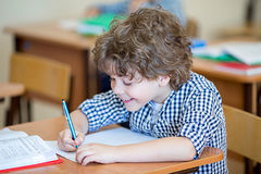 Happy pupil Royalty Free Stock Images