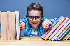 Happy pupil in glasses against books Royalty Free Stock Images