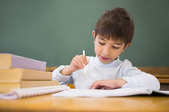 Happy pupil writing in notepad at desk Stock Photography