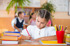 Happy pupils at school Royalty Free Stock Photo