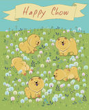 Happy puppies on the blossoming field royalty free stock images