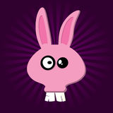 Happy Rabbit Royalty Free Stock Image