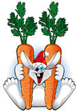 Happy Rabbit with carrot Stock Photo
