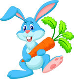 Happy rabbit cartoon holding carrot Royalty Free Stock Photo