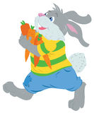 Happy rabbit  with an  large carrot Royalty Free Stock Photos