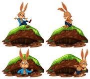 Happy Rabbit on White Background. Illustration Stock Photos