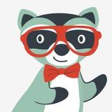 Happy raccoon gentleman Stock Photo