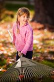 Happy Raking Leaves Royalty Free Stock Photo