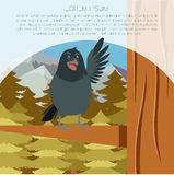 Happy Raven on the Tree winter flat background. Vector image of the Happy Raven on the Tree winter flat background Stock Photo
