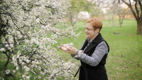 Happy red-haired senior woman looks at and smells cherry tree blossom. Slow motion. Happy red-haired woman looks at and smells cherry tree blossom and smiles in stock video