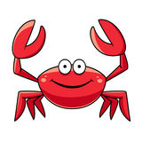 Happy red marine crab with big claws Royalty Free Stock Image