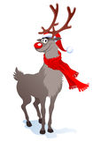 Happy reindeer Stock Images