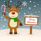 Happy Reindeer & Merry Christmas Sign. A merry Christmas greeting card with a happy reindeer smiling and holding a candy cane in a snowy scene with a merry Royalty Free Stock Image