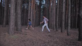 Happy relations of family, daddy playing in catch up with kid daughter between rows trees in forest during holidays at