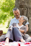 Happy relaxed senior couple sitting at park Royalty Free Stock Photos