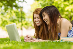 Happy relaxed women using laptop in park Royalty Free Stock Photography