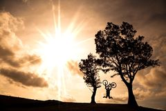 Happy rider holding bicycle and jumping. On the hill Stock Images