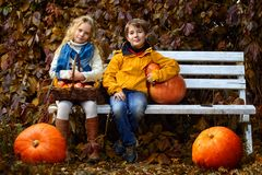 Vhildren autumn fashion Stock Images