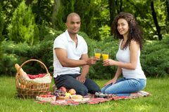 Happy romantic couple enjoying picnic in a park Royalty Free Stock Images