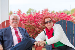 Happy and Romantic Senior Couple Looking at You Royalty Free Stock Image