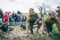 Happy runner after to cross electrified mesh in a test of extreme obstacle race Stock Photography