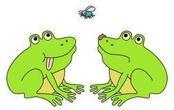 Happy and sad frog. Two frogs, one lucky and second with bad luck hunting the fly. Funny cartoon illustration stock illustration