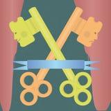 Happy and sad keys Stock Photo