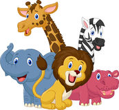 Happy safari animal cartoon Stock Photos