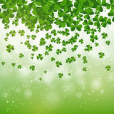 Happy Saint Patrick's day background design, postcard, template, invitation, green shamrock leaves, vector Stock Image