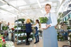 Happy Salesgirl Holding Flower Pot In Florist Shop stock photos