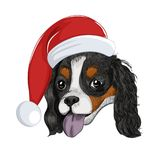 Happy Santa dog panting isolated on white background. Cavalier King Charles Spaniel wears Christmas holiday hat vector illustration