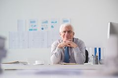 Happy satisfied entrepreneur Stock Photo