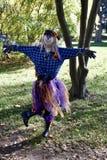 Happy Scarecrow Stock Image