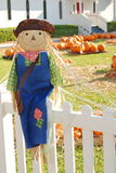 Happy Scarecrow and Pumpkins. Happy scarecrow sitting on fence with pumpkin patch in the background at church Royalty Free Stock Image