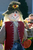 Happy Scarecrow in Sunshine Stock Photos