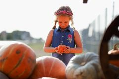 Happy school girl sitting between pumpkins at local farmer market in sunny autumn day. Stock Photos