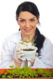 Happy scientist  holding new cucumber plants Royalty Free Stock Photo