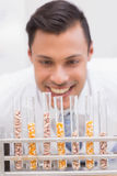 Happy scientist looking at tubes of corn and kernel Royalty Free Stock Image