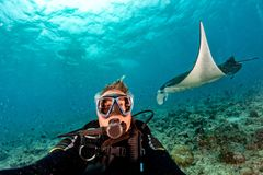 Scuba diver and Manta in the blue ocean background portrait. Happy scuba diver and Manta in the blue background while diving maldives stock photo
